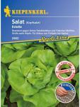 Salat Kopfsalat Estelle resistent Pillensaatgut