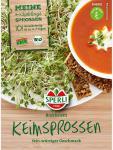 BIO Keimsprossen Brokkoli Brassica oleracea