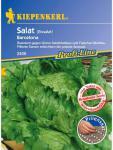 Salat Eissalat Barcelona Pillensaatgut resistent