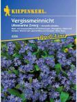 Myosotis sylvatica Vergissmeinnicht Ultramarine Zwerg blau