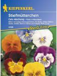 Viola x wittrockiana Stiefmütterchen Cats Mischung