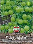 Ballonwein, Ballonrebe SPERLING´s Herzballon