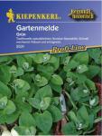 Gartenmelde grün
