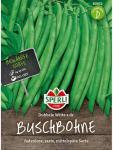 Buschbohne Dubbele Witte holländische Prinzess Phaseolus vulgaris