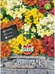 Goldlack SPERLING´s Chupado Mischung