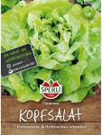 Kopfsalat Casanova resistent gegen grüne Salatblattlaus