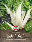 Mangold White Silver 2 (glatter Silber)
