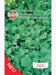 Winterraps, Gartendoktor 250gr für ca. 25 qm