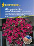 Petunia grandiflora Hängepetunien Fortunia Purple Wave purpurviolett Pillensaat