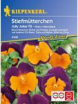 Viola x wittrockiana Stiefmütterchen Jolly Joker F2 orange-violett