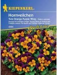 Viola x cornuta Hornveilchen Twix Orange Purple Wing
