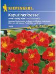Tropaeolum minus Kapuzinerkresse Jewel Cherry Rose