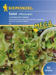 Salat Pflücksalat Amerikanischer Brauner 50gr