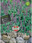 Anis-Ysop SPERLING´s Limonadenpflanze