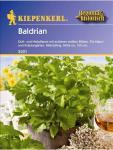 Baldrian Valeriana officinalis