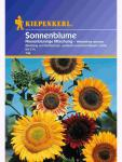 Helianthus Sonnenblume riesenblütig Mischung