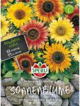 Sonnenblume Farbenpracht Mischung