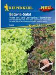 Salat (Batavia-Salat) Teide (rot) und Leny (grün) Batavia-Mix Saatband 2x2, 5m