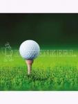 RSM-Rasensamen 4.3 Golfrasen Abschlag 10kg , Grundpreis: 10.30 € pro 1 kg
