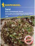 Salat Eichblattsalat Navaro rot resistent