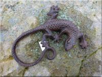 Eidechse, Gekko, Salamander aus Gusseisen 23 cm