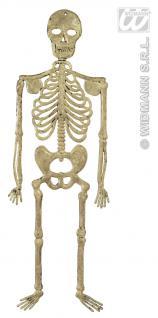 Skelett Deko, 32 cm Wanddeko, Tischdeko, Grusel, Halloween 8706