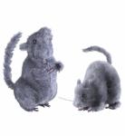 2 Stck.Ratte, Maus, 14 cm Horror Halloween, Deko mit Fell 7764