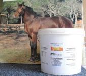 Bronchio für Pferde, Kräuter für die Atemwege