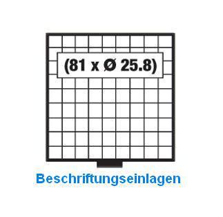 SAFE 6249 BEBA Beschriftungseinlagen Kartoneinlagen Etiketten für MINI Schuber 6209 - Vorschau