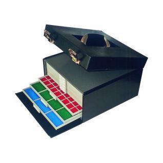SAFE 6325 BEBA Münzkoffer MAXI (leer) für den Münzkasten 6100 & Sammelbox 6100 & 7 Beba Münzboxen 6601 - 6612