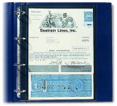 10 SAFE 450 Compact A4 Banknotenhüllen Hüllen Spezialblätter DIN A4 1 Tasche 210 x 295 mm Banknoten Papiergeld Geldscheine Notgeldscheine