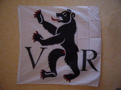 Flagge Fahne APPENZELL AUSSERRHODEN 120 x 120 cm - Vorschau