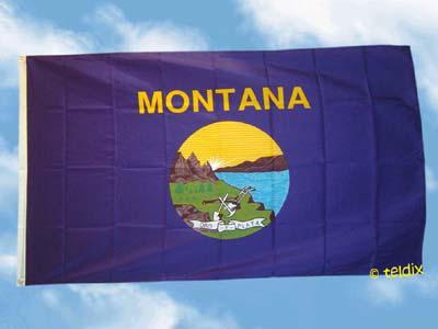 Flagge Fahne MONTANA 150 x 90 cm - Vorschau