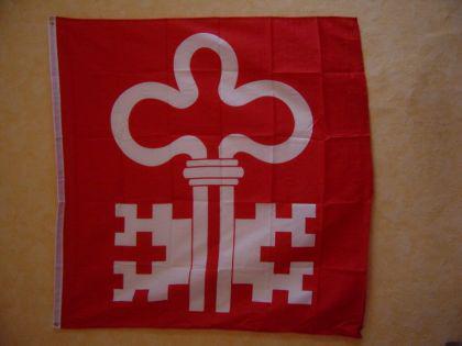 Flagge Fahne NIDWALDEN 120 x 120 cm - Vorschau