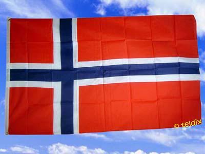 Flagge Fahne NORWEGEN 150 x 90 cm - Vorschau