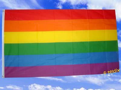 Flagge Fahne REGENBOGEN 150 x 90 cm - Vorschau