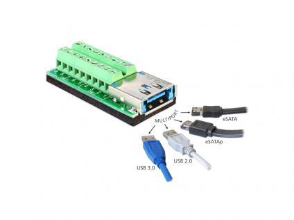 Adapter Multiport USB 3.0 + eSATAp Buchse an Terminalblock 18 Pin, Delock® [65405]