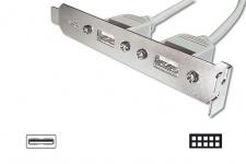 USB Slotblech 2x A Buchse extern an 1 x 8-Pol intern, 2x4-reihig