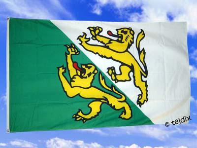 Fahne Flagge THURGAU SCHWEIZ 120x120cm