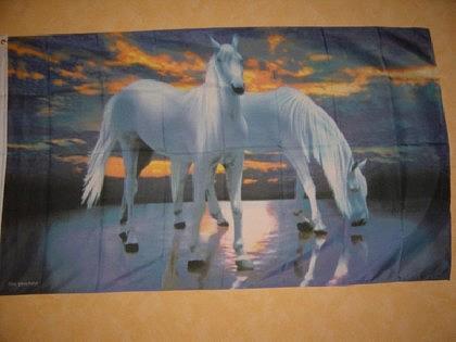 Fahne Flagge WEISSE PFERDE 150 x 90 cm