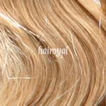 Hairoyal® Clip-On-Tressen-Set - glatt #24- Honigblond/Sand