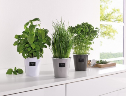 blumentopf metall g nstig online kaufen bei yatego. Black Bedroom Furniture Sets. Home Design Ideas