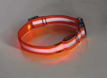HUNDE-HALSBAND LED SYNTHETIK SIGNALORANGE LEUCHTFUNKTIONEN NEU Größe 30- 45 cm
