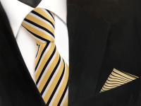 TigerTie Krawatte + Einstecktuch in gold schwarz weiß gestreift - 100% Polyester