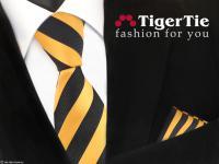 schöne TigerTie Krawatte+ Einstecktuch gelb goldgelb anthrazit schwarz gestreift