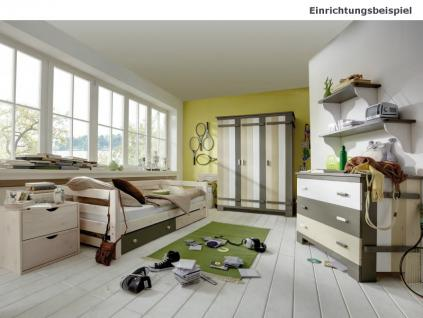 Kleiderschrank Jugendzimmer Kinderzimmer 3-türig Kiefer massiv - Vorschau 2