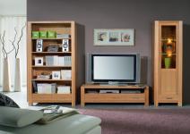 Wohnwand Wohnzimmerwand Bücherregal Vitrine TV-Regal Kernbuche massiv geölt