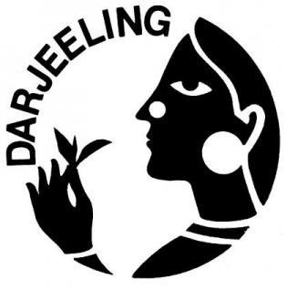 1kg Tee Initiative Darjeeling grün - Vorschau 2