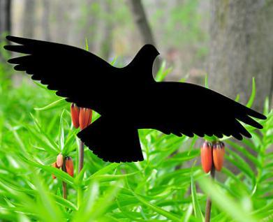 vogel aufkleber folie silhouette f r fensterscheiben fenster wintergarten decal kaufen bei. Black Bedroom Furniture Sets. Home Design Ideas
