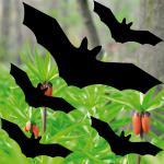 set Bat Vampire Dracula black die cut Window Protection decals vinyl stickers